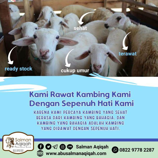 Rumah Aqiqah Murah di Area Pagedangan Kabupaten Tangerang Hubungi 0822 9778 2287 / 0813 1188 2287